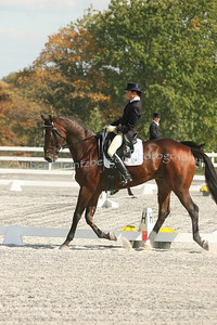 Fair Hill Dressage 1082
