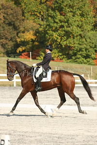 Fair Hill Dressage 1087
