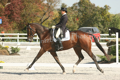 Fair Hill Dressage 1101