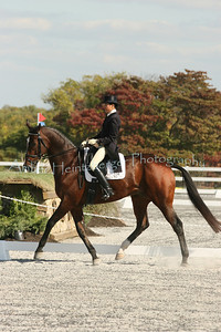 Fair Hill Dressage 1084