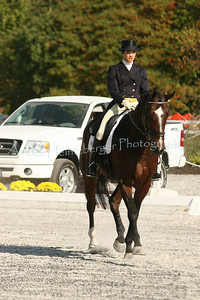 Fair Hill Dressage 1094