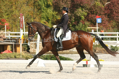 Fair Hill Dressage 1102