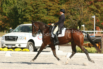 Fair Hill Dressage 1103