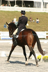 Fair Hill Dressage 1074