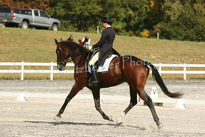 Fair Hill Dressage 1106