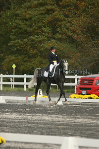 Fair Hill Dressage 181