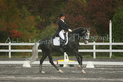 Fair Hill Dressage 196
