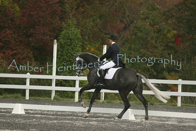 Fair Hill Dressage 201