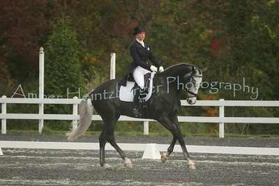 Fair Hill Dressage 197
