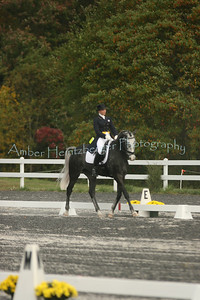 Fair Hill Dressage 180