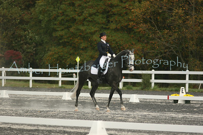 Fair Hill Dressage 176
