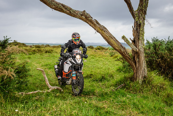 2018 KTM New Zealand Adventure Rallye - Northland (8)