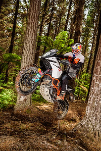 2018 KTM New Zealand Adventure Rallye - Northland (6)