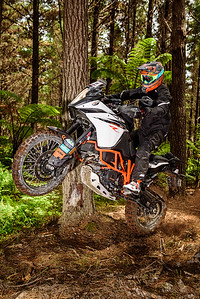 2018 KTM New Zealand Adventure Rallye - Northland (5)