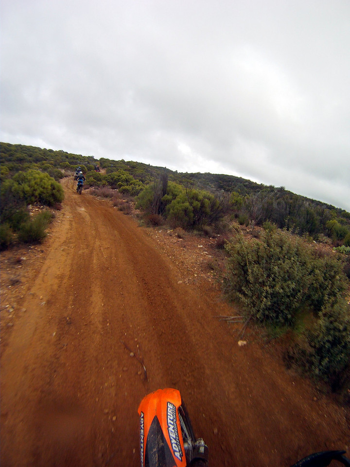 back on some fast trail with perfect dirt