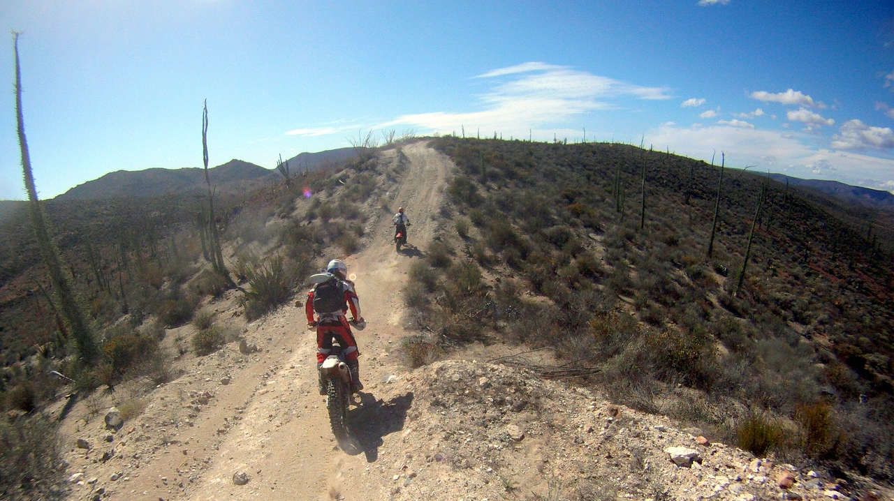 these trails were a blast. they curved up and down the hills and were very fast