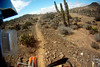 epic single track through the cactus