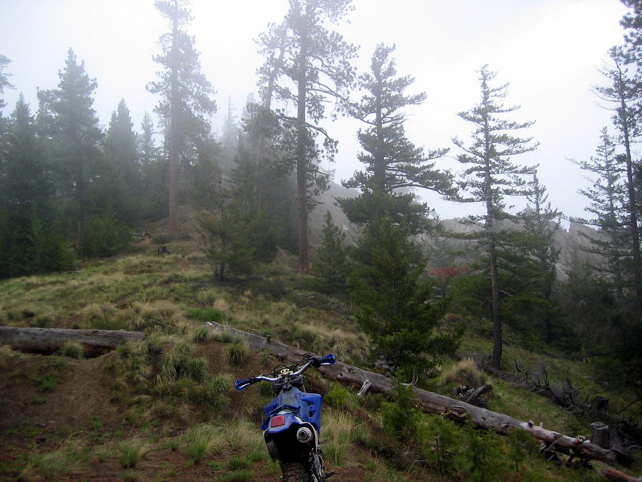 top of mission ridge trail