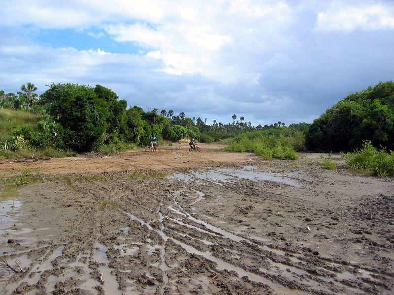 a fun mud field