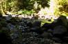 nice little creek crossing on 80A
