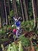 """don doing freestyle tricks, I think this was a """"no handed seat planter"""""""