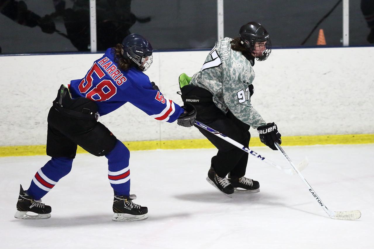 The Peachtree Ridge Lions played Walton HS in a Georgia High School hockey game
