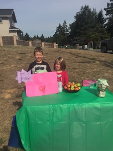 Mike Richards -- contributed Ridgewood Elementary School 2nd grader Nevan Rose and his sister Raelee Rose set up one of several stands throughout the greater Eureka area on Sunday to raise money for the survivors of the Sonoma County fires.