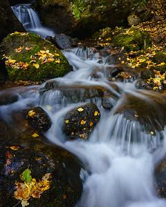 Crystal Creek, Green Mountain Falls, CO