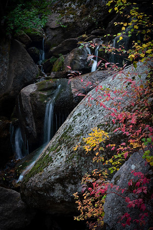 Late September color at Cable Falls in Green Mountain Falls, CO.