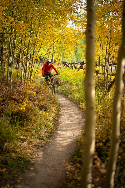 A mountain biker checking out the singletrack of the Blue River Trail, Breckenridge, CO.