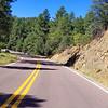 Prescott Forest 89A