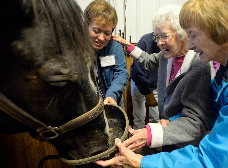 Phyllis Frank, center, gives a horse named Drifter a treat Wednesday, Sept. 27, 2017, with help from her daughter, Connie Wilson, right, and volunteer Vernita Erbeck, left, while participating in Riding in the Moment, a program geared towards people with dementia, Alzheimer's Disease and other forms of memory loss, at Hearts & Horses Theraputic Riding Center in Loveland. (Photo by Jenny Sparks/Loveland Reporter-Herald)
