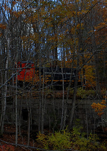 Milford Bennington Railroad - Wilton, NH coming through the woods - 5