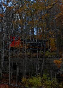 Milford Bennington Railroad - Wilton, NH coming through the woods - 5