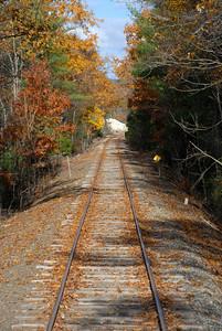 Fall foliage on the rails - Wilton, NH - 1