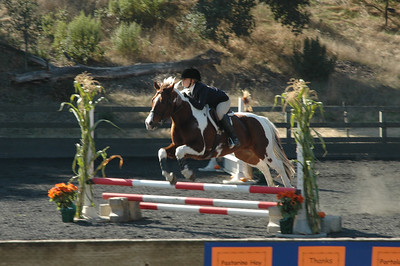 This rider/horse went crazy fast through the Jumpers course.