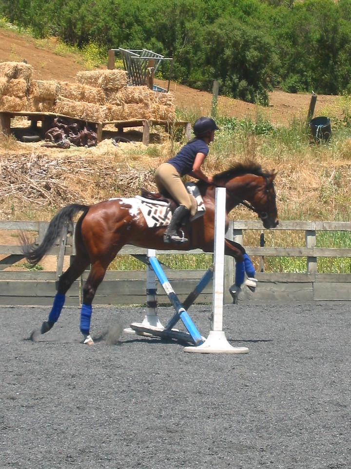 mine horsie! 006