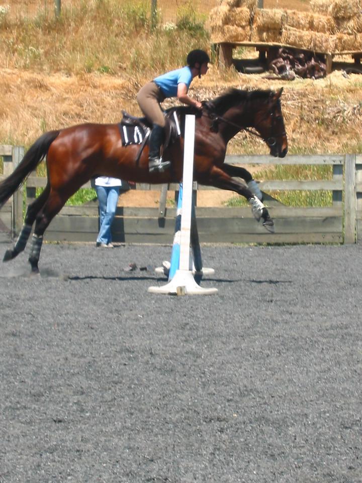 mine horsie! 018