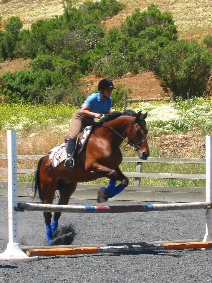 mine horsie! 019