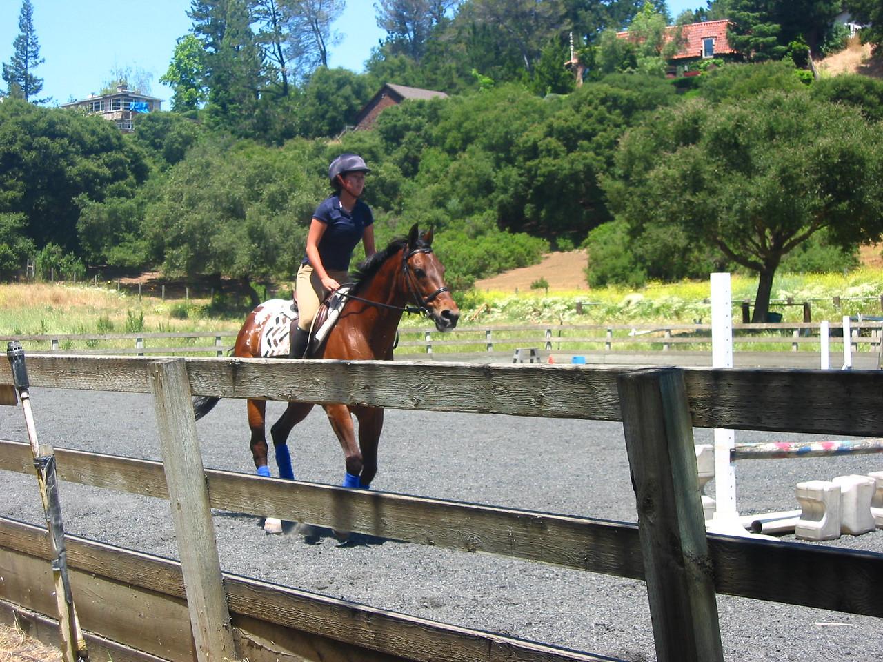 mine horsie! 001