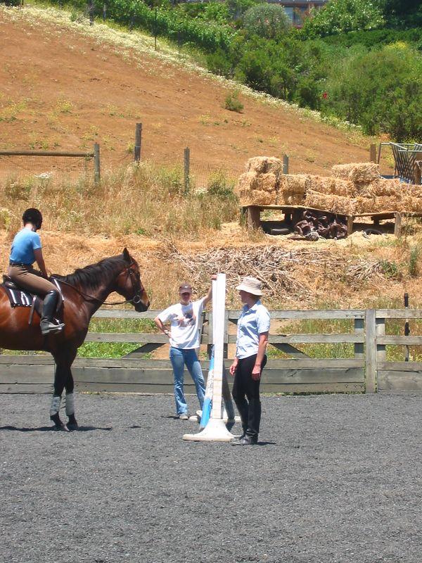 mine horsie! 015