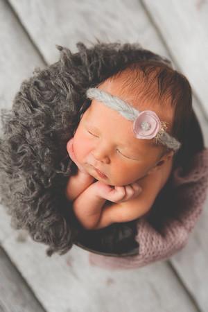 Ries, Newborn 2018