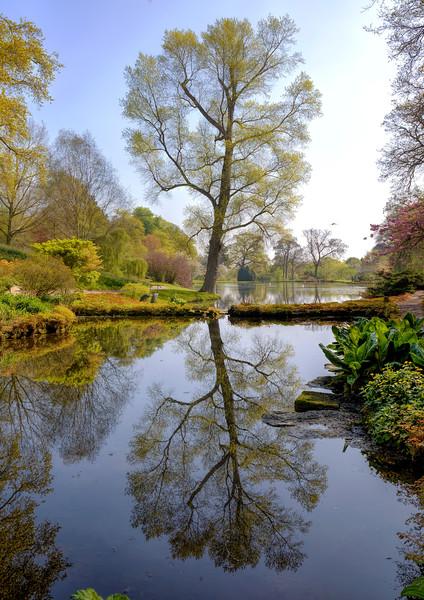 Hodnet Gardens
