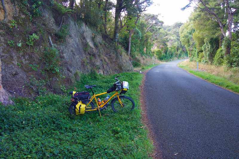 "A beautiful section of nice road and trees and bush - love riding through this kind of terrain.<br /> <br /> I had a beautiful tail wind for this 35km section from Ocean Beach to the Cross Creek turnoff. I rode the coast from Eastbourne, around the south coast to Ocean Beach in this direction specifically to get a tailwind on this section and it is always nice when a tailwind plan works.<br /> <br /> <br /> Rimutaka Cycle Trail:  <a href=""http://www.wellingtonnz.com/rimutaka-cycle-trail/riding-the-trail/"">http://www.wellingtonnz.com/rimutaka-cycle-trail/riding-the-trail/</a><br /> <br /> Ride: <a href=""https://www.strava.com/activities/530528770"">https://www.strava.com/activities/530528770</a>"