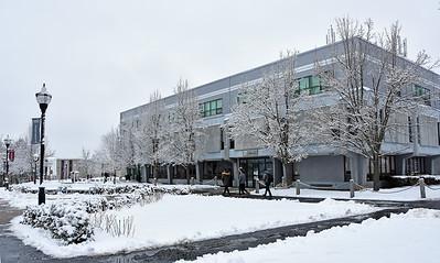 Snowy Day 1-18-17