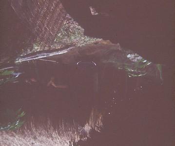 AR-31 A dark photo (#3) of a straw hooch
