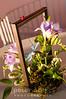 In_Bloom_VIP-105