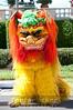 Lion_Dancers_002