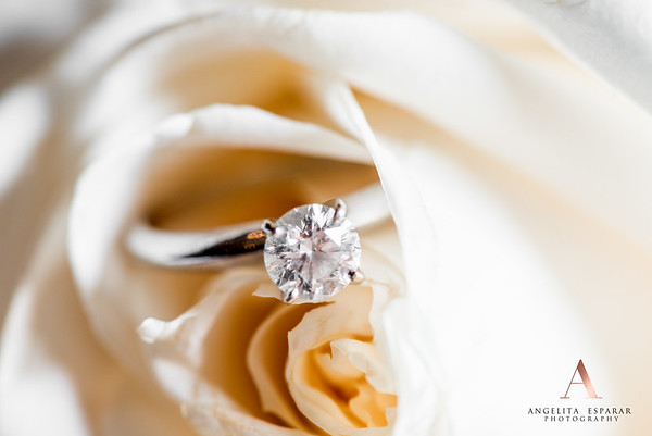 2017AngelitaEspararPhotography_rings-15