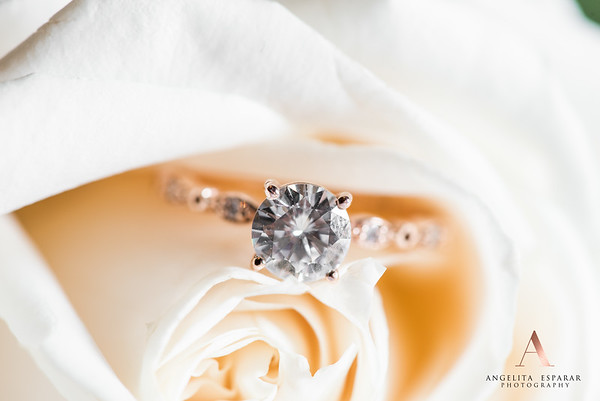 2017AngelitaEspararPhotography_rings-6